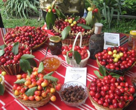 Fruit festivals in Bulgaria