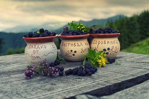 Blueberry festival in Bulgaria