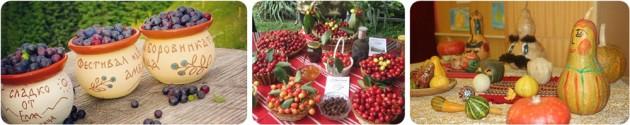 Fruit Fstivals Bulgaria