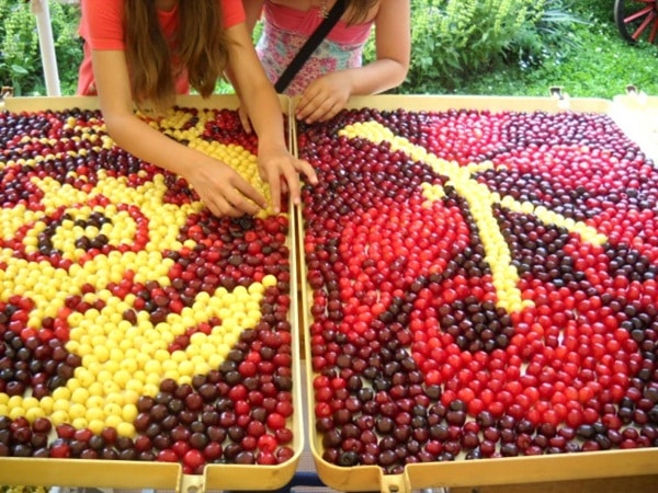 Cherry festival in Bulgaria