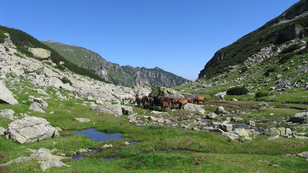 Rila mountain, Bulgaria