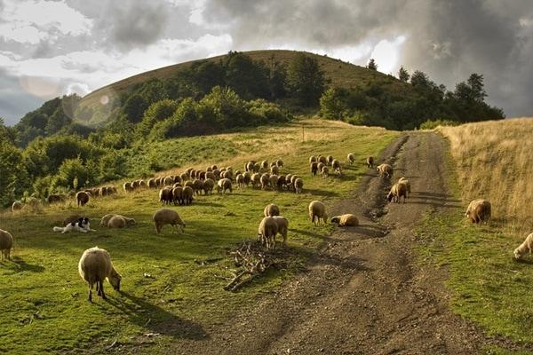 Hiking in Rhodope mountains, Bulgaria