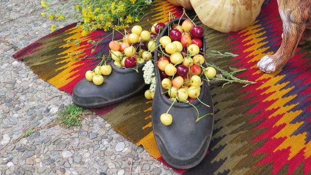 The cherry festival in Bulgaria